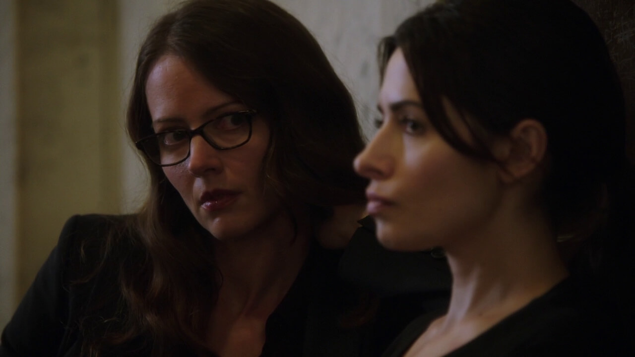 Person of Interest - Root ve Shaw
