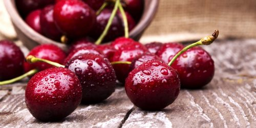 Visne fotografları – cherry photos (19)