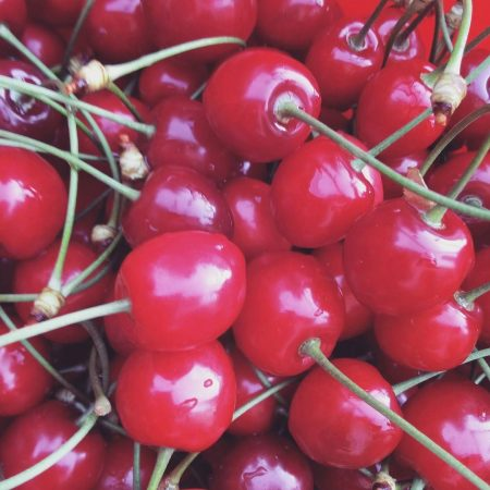 Visne fotografları – cherry photos (38)