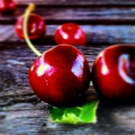 Visne fotografları – cherry photos (41)