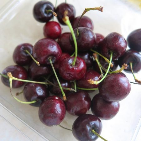 Visne fotografları – cherry photos (67)